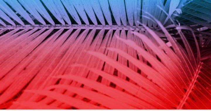 The Velvet Stripes – High Disco [Furious Mandrill Records]