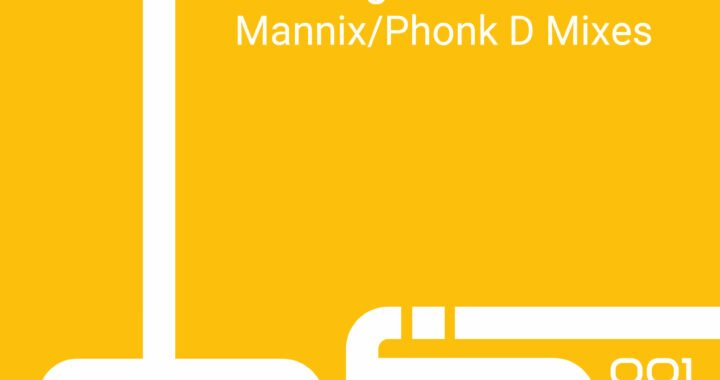 Mannix featuring Lee Wilson – Do It Right Now [Dafia Records]